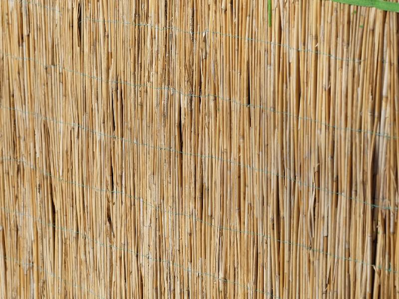 Sistemas de ocultaci n para jard n brezo ca izo mimbre for Canizo para jardin